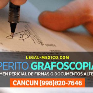 Dictamen Pericial en materia de Documentoscopía